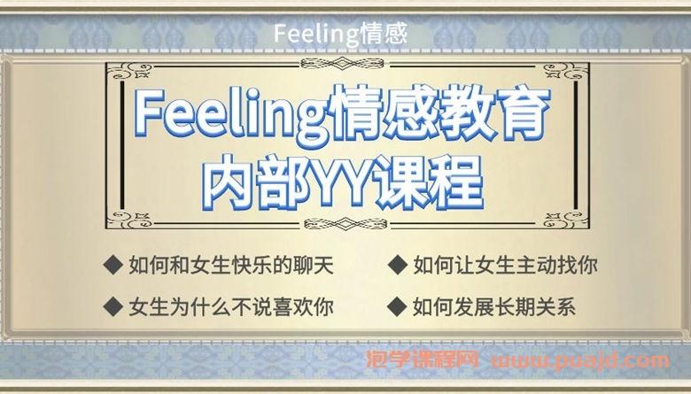 Feeling情感教育内部yy课程