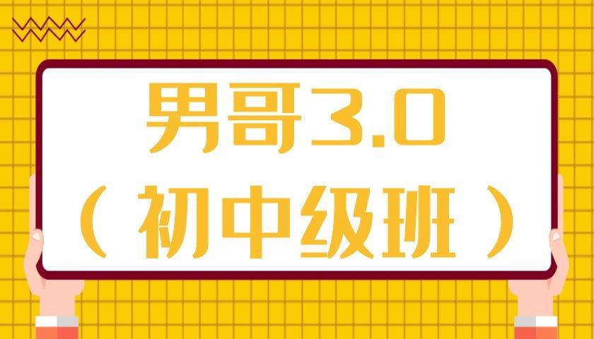 男哥3.0(初中级班微信群内部课)